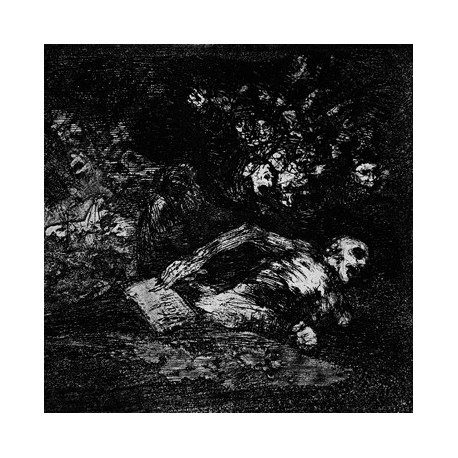 Cryptic Wanderings / In the Shades - Split