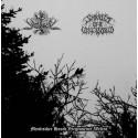 Waldseel / Shards of a Lost World - Mystischer Hauch Vergessener Welten