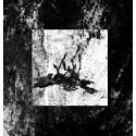 Marasme - De Llums i Ombres