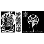 Wooden Stake / Druid Lord - Split
