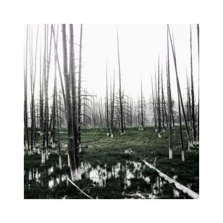 Seventh Genocide - SVNTH