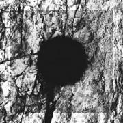 Necandi Homines - Black Hole