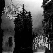 Spiculum Iratus / Bestial Incarnation - Monuments of Decimation