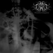 Absonus Noctis - Penumbral Inorgantia