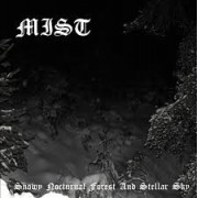 Mist - Snowy Nocturnal Forest and Stellar Sky