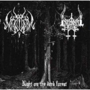 Infernal Hate / Lupus Nocturnus - Night on the Dark Forest