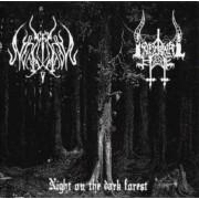 Infernal Hate / Lupus Nocturnus - Night on the Dark Forest