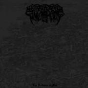 Sinpularctos - The Voidance of Man